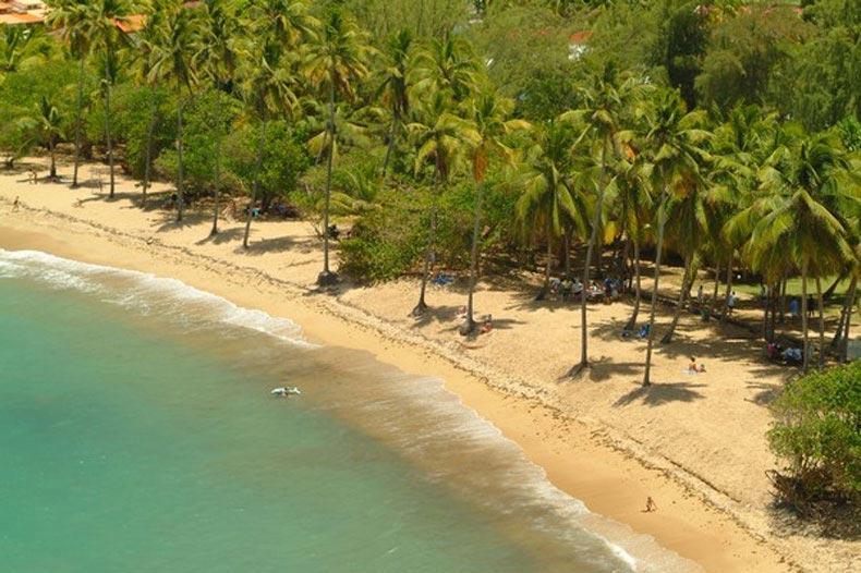 Magnifique plage en Martinique