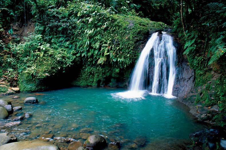 Magnifique cascade guadeloupe