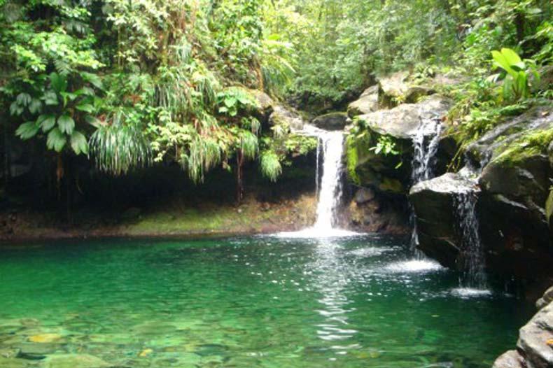 La cascade Paradise