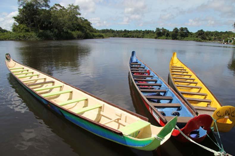 Pirogues sur marais de Kaw en Guyane