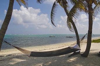 Plage Guadeloupe Hamac Palmiers