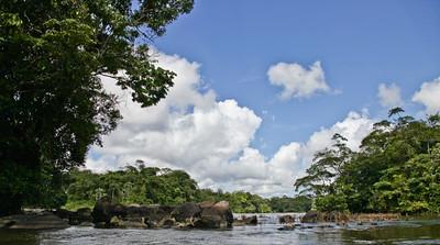 Paysage de rivière en Guyane