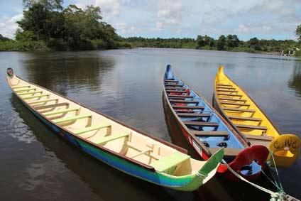 Louer une voiture à St Laurent du Maroni pour visiter la Guyane