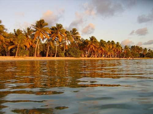 Découvrez les plages de Martinique avec une voiture de location